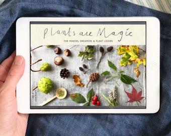 Ebook botanical colour at your fingertips plant volume 2 plants are magic digital magazine botanical creativity emagazine ebook fandeluxe Choice Image
