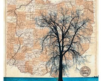 Ohio Map Tree