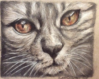 Original drawing - Cat with amber eyes
