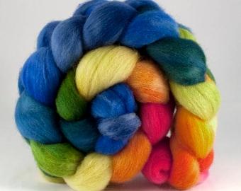 Superfine Shetland combed top 'Violet-free Rainbow Zone'