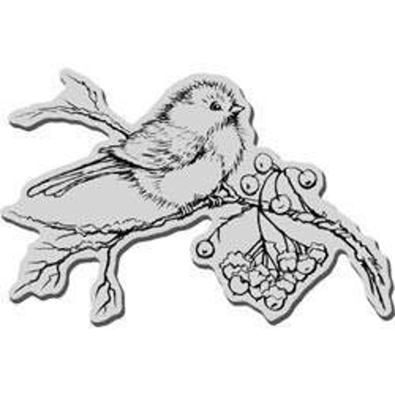 scrapbooking, christmas Snow Bird winter NEW card making Stampendous cling acrylic stamp