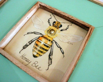 WAS 70!! Original framed painting, anatomical study of a honey bee