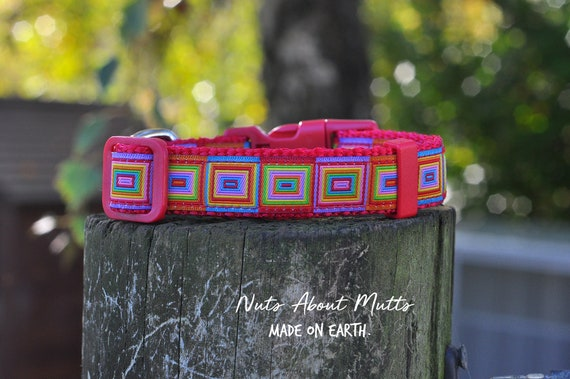 matching leads Forget Me Not ribbon dog collar sm//med medium size only
