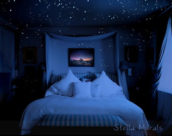 Glow In The Dark Star Ceilings Murals And Canopies By Stellamurals