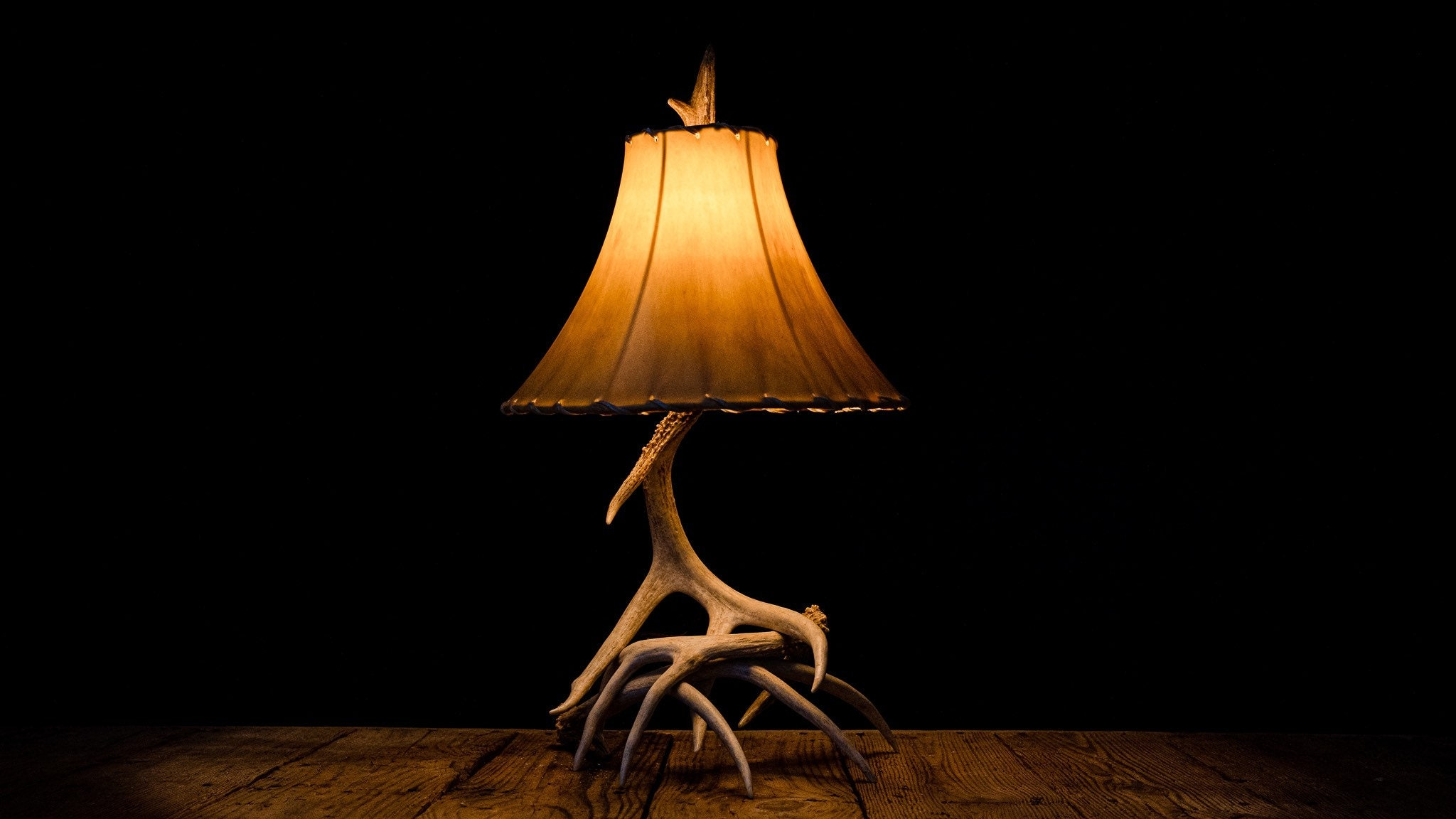 Small 3-4 Whitetail Deer Shed Antler Lamp Rustic Country ...