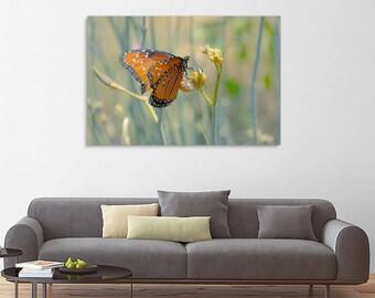 Fine art flower photography - Butterfly Fields - original home decor monarch green toned flower wall art print