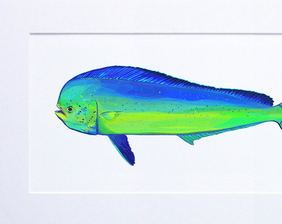 Blue, Green, Fish Illustration, Digital Watercolor, Mahi Mahi Print