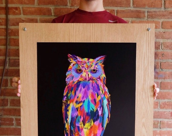 Large Multicolored Illustration, Digital Owl Print