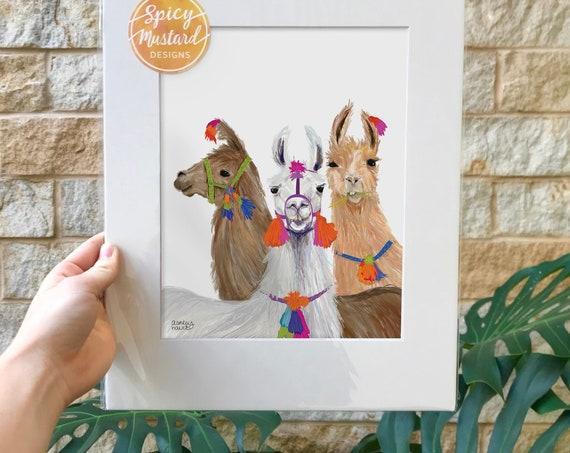 Curious Llamas, Digital Illustration, Print