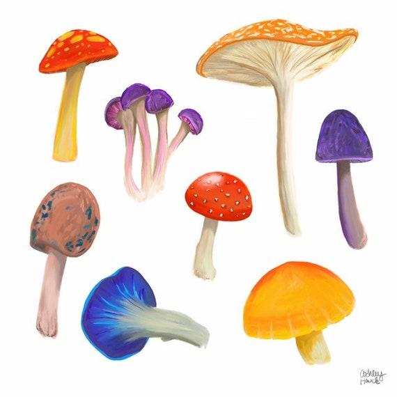 Multicolored Illustration, Digital Mushroom Print