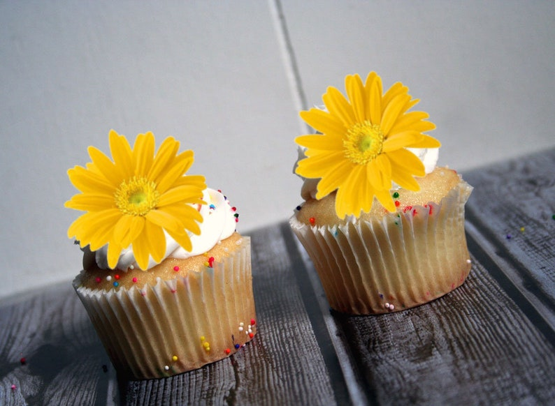 Edible Flower Cake Decorations Yellow Daisies Cupcake