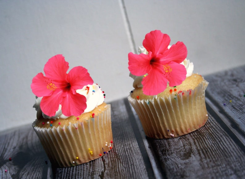 Edible Flower Cake Decorations Pink Hibiscus Cupcake And