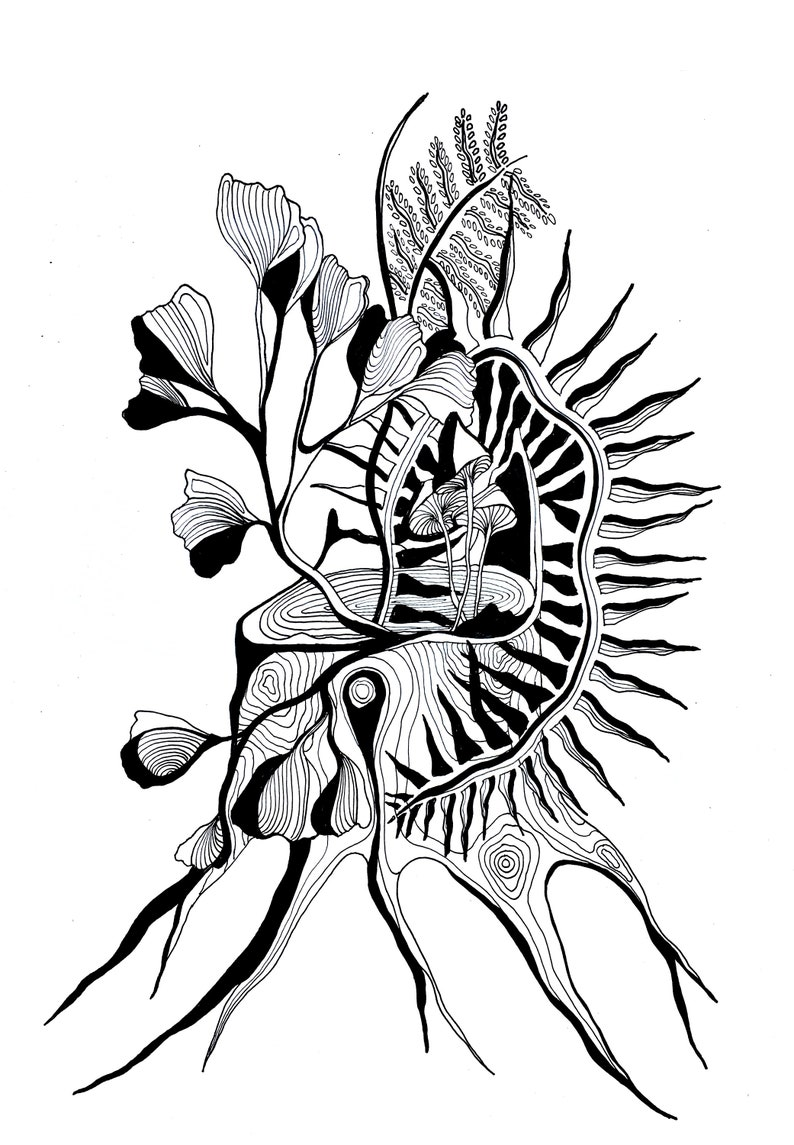 Ferns and Flowers Pen and Ink Drawing Mushrooms Black and image 0