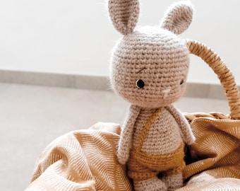 Crochet kit crochet set Pumpkin crochet