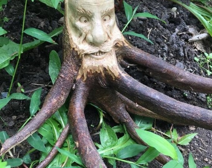 Halloween SALE Wood Carving, Root Sculpture, Hand Carved by Josh Carte, Rustic Decor, Unique Wood Art, Face Carving, OOAK, Wall Art, Beard,