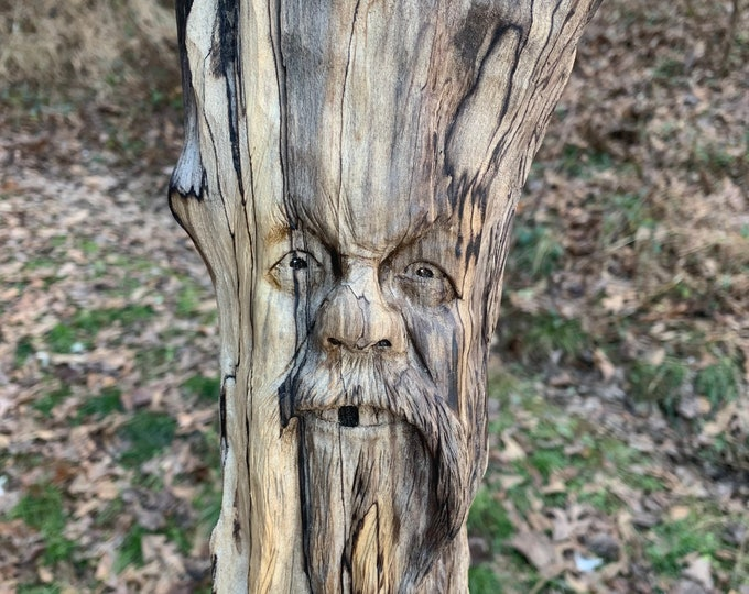 Driftwood Carving, Wood Carving, Driftwood Art, Wood Wall Art, by Josh Carte, Handmade Woodworking, Carving of a Face, Nature Art
