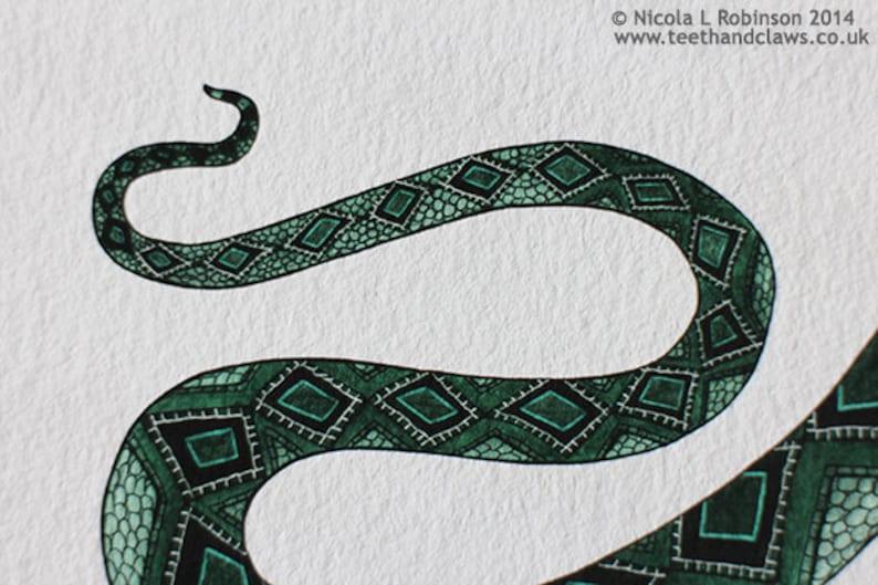 Schlangenliebhaber datieren