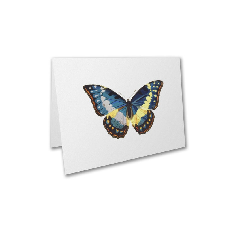Butterfly Blank Note Cards Nature Note Cards Size A1 10 image 0