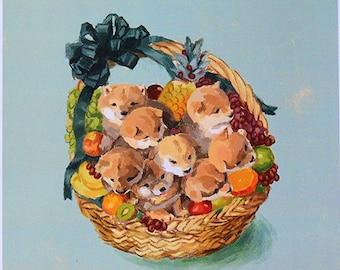 Poster Shiba puppies fruit basket_fruit_kawaii_puppy_horse fiddle press_shiba inu_digital painting_photoshop_fruit basket_dog_illustration