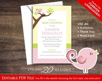Birds baby shower etsy instant download little birdie invitations editable pdf diy 4x6 printable baby shower invitations autofill enabled invites bird nest 47a filmwisefo