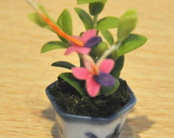 REDUCED! only 3 left to choose from PRETTY ORCHIDS Fimo flowers in blue china pots