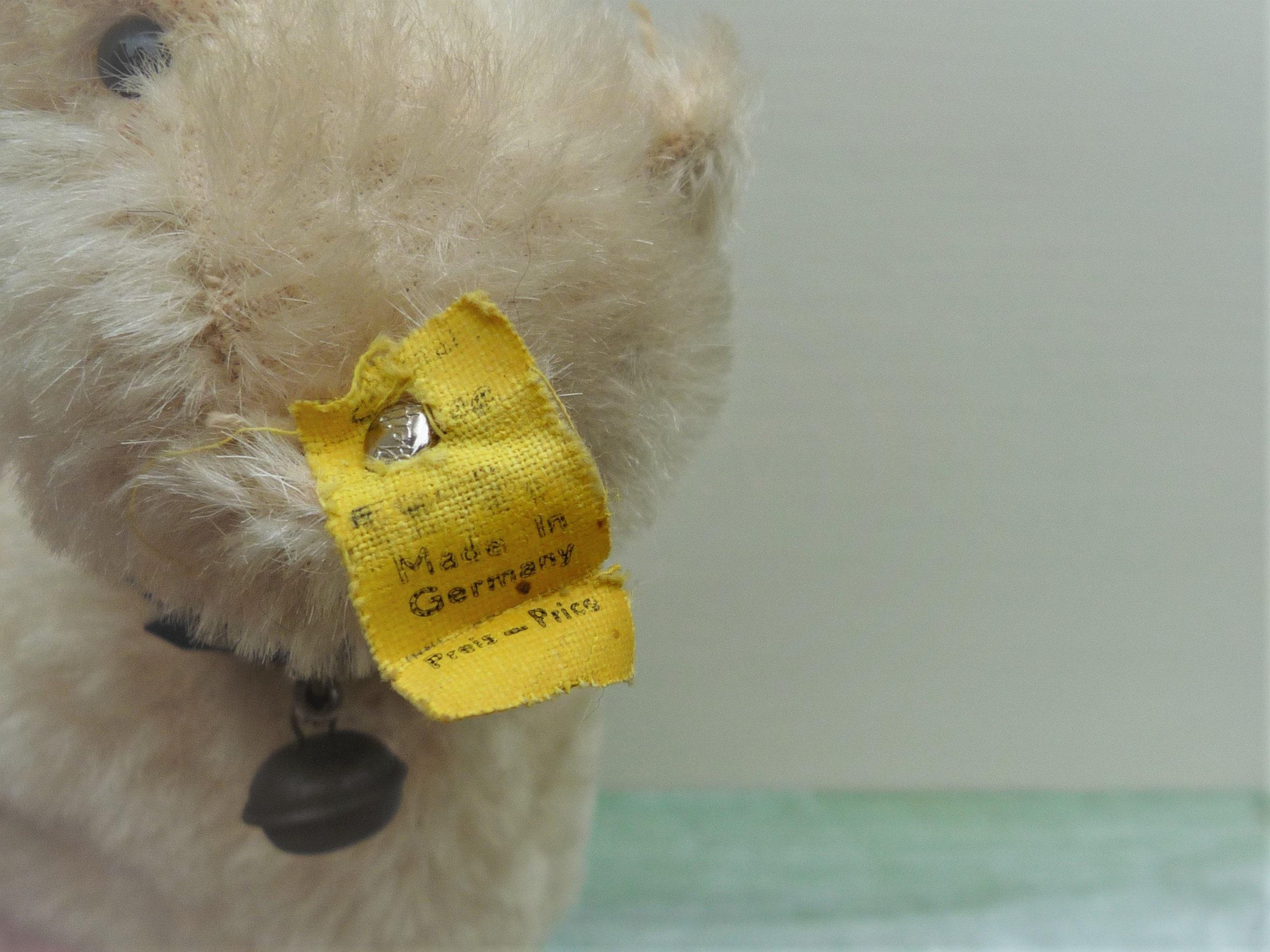 bf4de835426b 1960s Steiff Polar Bear 1312