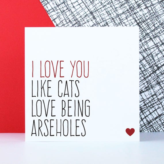 Funny Cat Love Card For Boyfriend Anniversary Card For Etsy