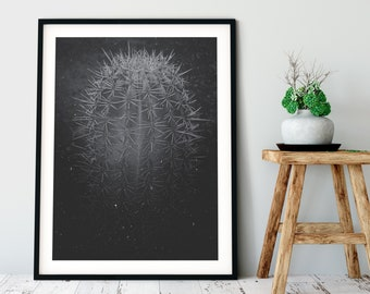 Desert Cactus No. 1 Photographic Print