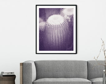 Desert Cactus No. 4 Photographic Print