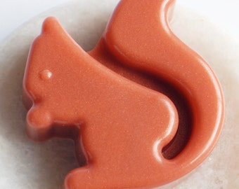 Squirrel Soap, Melt and Pour Glycerin, Animal Bath Decor, Kids Party Favors, Woodland Creatures, Fall Accessories, Vegan Bath Products