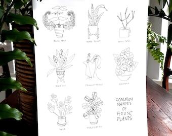 Common Names of House Plants 11 x 17 Digital Print /Plant Line Drawing Print / Plant People Art / Plant Art / Fiddle Leaf Fig & Monstera Art