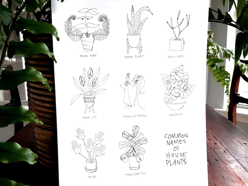 Common Names of House Plants 11 x 17 Digital Print /Plant Line image 0