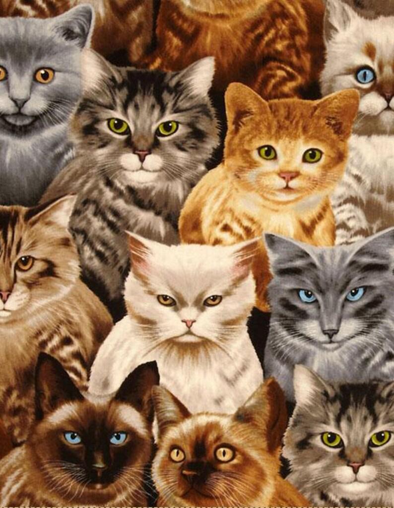 Картинки много кошек, поделки
