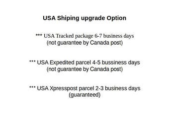 USA Expedited parcel 4-5 business days (Not guarantee by Canada post)