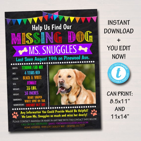 image regarding Printable Lost Pet Flyer named EDITABLE Dropped Canine Flyer and Poster Template, Printable