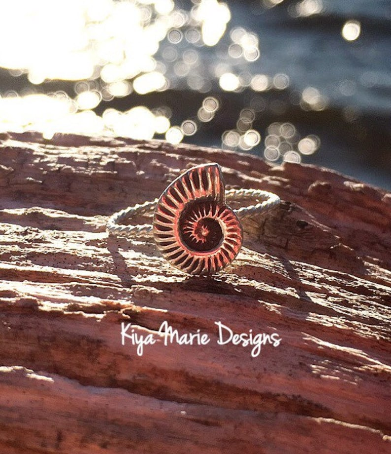 Nautilus shell Ring skinny band stack ring Sterling Silver image 0