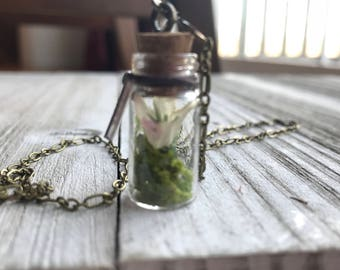 Apothecary Fairy Bottle Necklace
