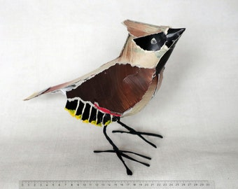 Bullbird