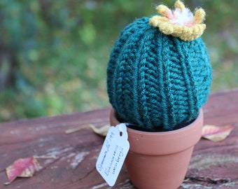 Medium Knit Barrel Cactus