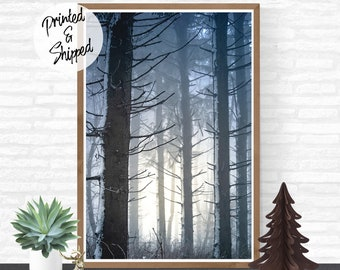 Winter Forest Print Wilderness Wall Art Photography Printed on Photopaper
