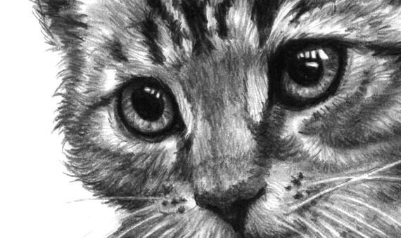 Copie De Chat Affiche De Dessin Au Crayon De Chat Noir Et Etsy
