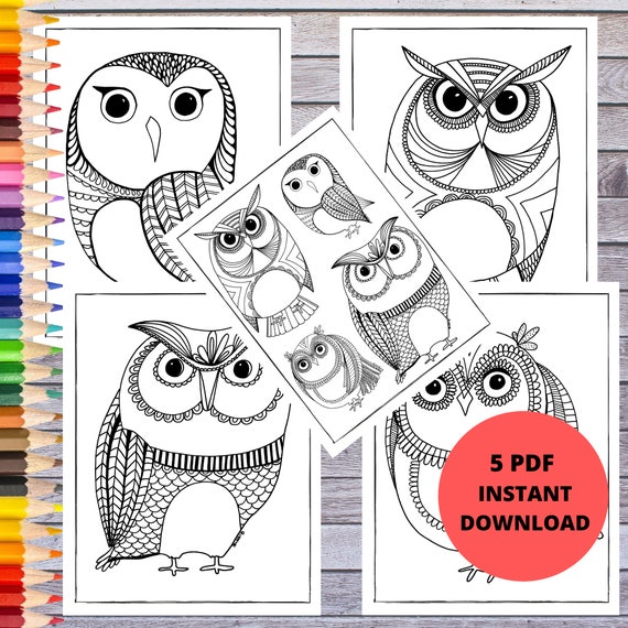 Printable Coloring Page Owl Coloring Pages  Digital Prints