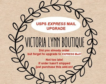 USPS EXPRESS Mail Upgrade - USA Only - Contact me prior to purchasing