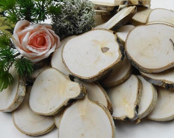 """2""""-3"""" Tree Slices, Birch Wood Slices, Branch Slices, Woodworking, DIY Wood, Tags, Wood Slices, Wood Blanks, Crafts Wood, E54, Set of 10"""