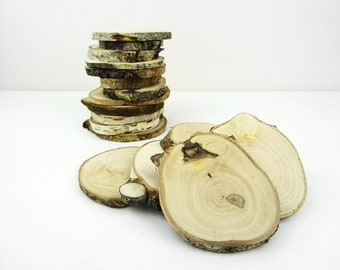 Birch Wood Tree Slices, Natural Wood Rounds for Crafts 12pcs