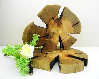 Wood Slice Centerpiece - Modern Rustic Home Decor - Large Tree Slice - Wood Slice Charger - Large Wood Round Coaster