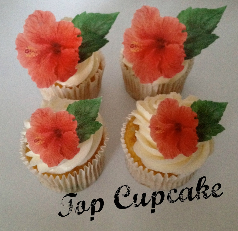 Edible Hibiscus Flower Cupcake Toppers Etsy