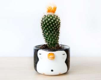 Ceramic penguin planter pot for succulent, Pottery penguin vase, Penguin decor nursery baby gift, Penguin figurine ornament Penguin art gift