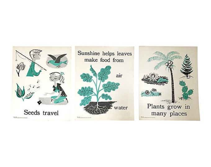 """1960s Primary Educational 18""""H Posters, Set of 3"""