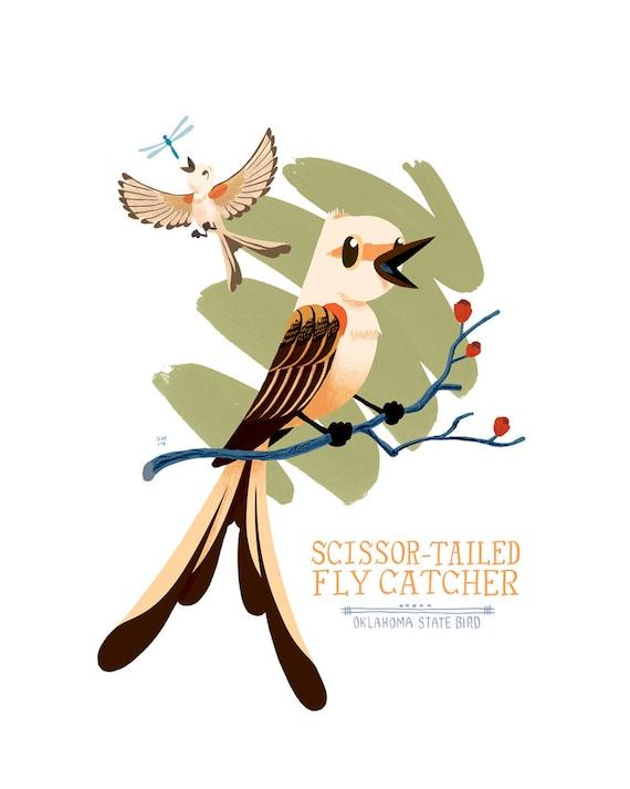 Scissor Tailed Flycatcher Oklahoma State Bird Illustrated Etsy